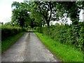 H5514 : Road near Doocarrick by Kenneth  Allen