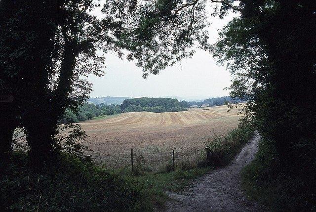 View from White Downs Lane
