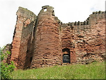 NS6859 : Bothwell Castle from the south by M J Richardson