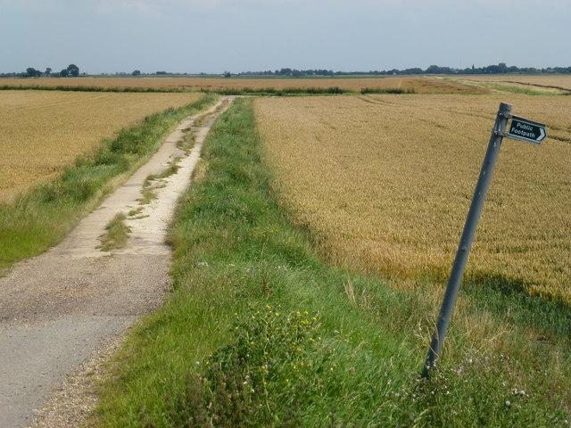 Track onto Curf Fen near Chatteris