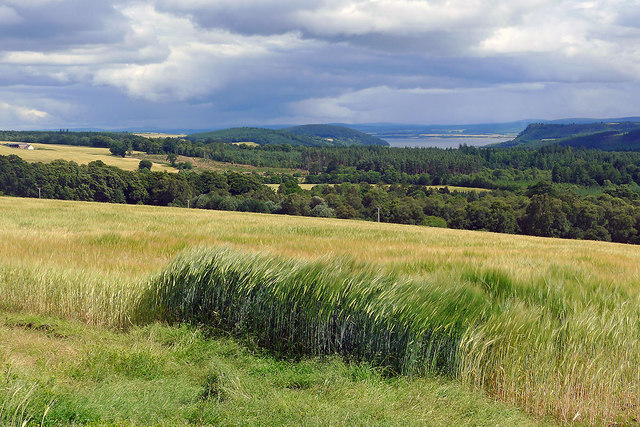 Agriculture and forestry - foremost elements of the Black Isle economy