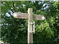 TA1844 : Hornsea Rail Trail Signpost, Goxhill by David Hillas