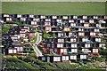 SX4950 : South Hams : Cedar Park by Lewis Clarke