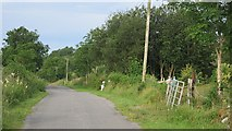 G8233 : Local road, Carrigeencor by Richard Webb