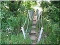 SO3716 : Footbridge near Llanvetherine by Jeremy Bolwell