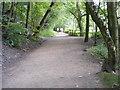 SO8992 : Baggeridge Path View by Gordon Griffiths