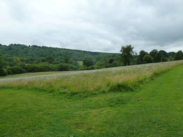 Wildlife area at Highclere Castle
