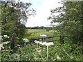 NZ1750 : Looking across towards Annfield Plain by Robert Graham