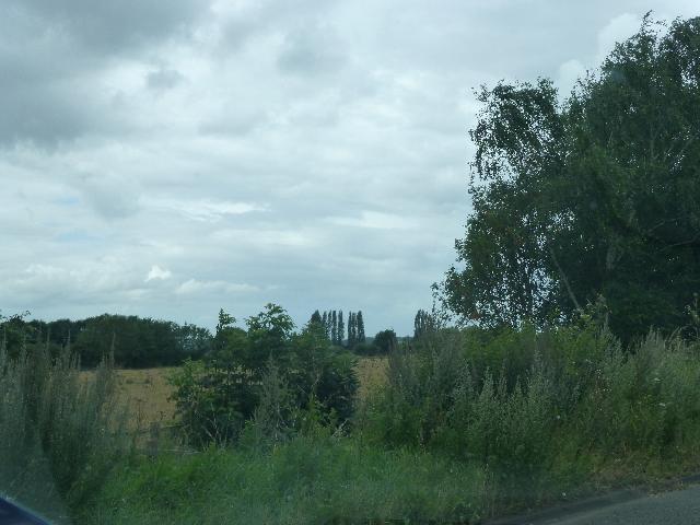 Field By M5