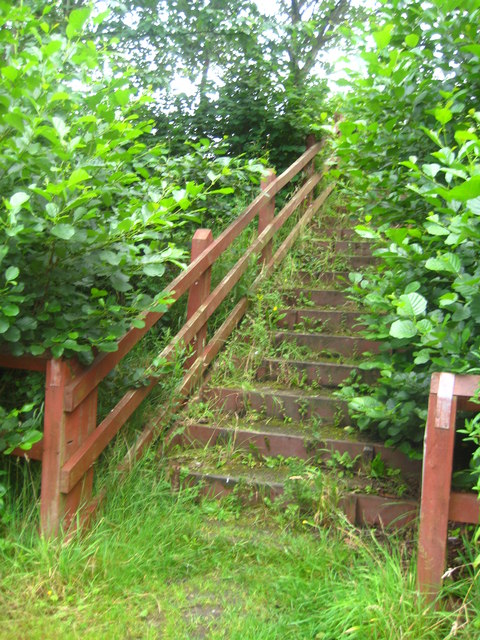 Steps leading out of Maghull Park