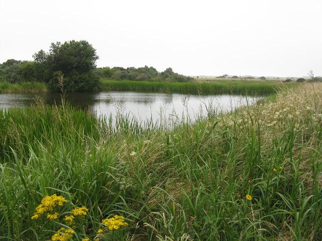 Marl Loch at Aberlady Bay LNR