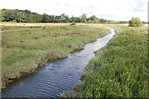 TQ5203 : River Cuckmere near Alfriston by Julian P Guffogg