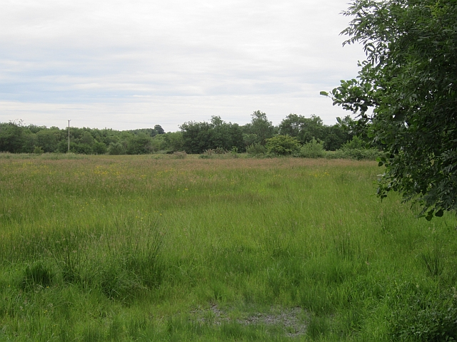Field near Coolaney