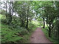 SD4892 : Path on Scout Scar by Richard Webb