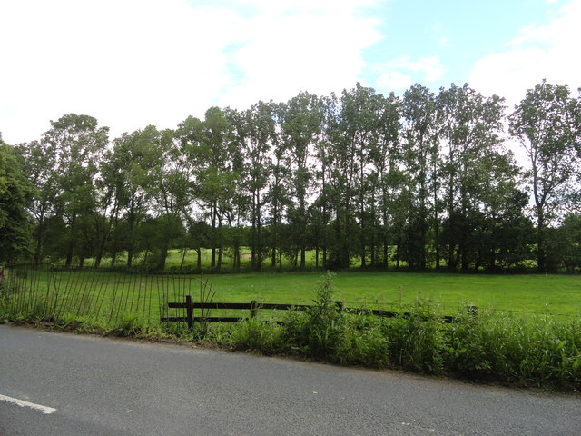 View from Whitworth Lane
