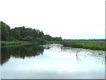 N0877 : The Camlin River, near Cloondara / Clondra, Co. Longford by JP