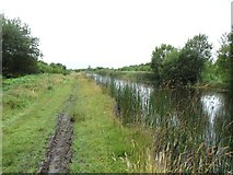 N1824 : Grand Canal in Turraun, west of Pollagh, Co. Offaly by JP