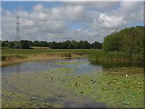 TQ0471 : Shortwood Pond by Alan Hunt