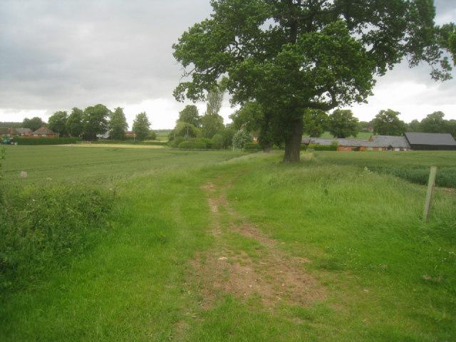 Summer Down Farm