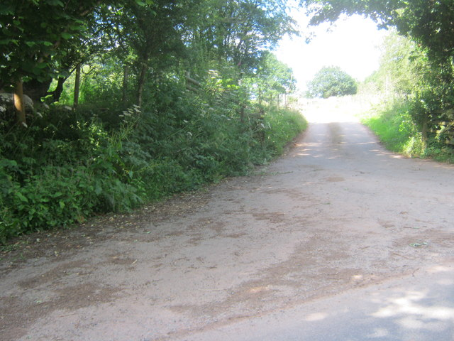 Road to The Oaks from Aberyscir