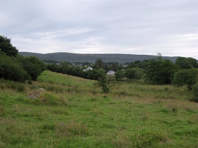 Field, Bunnyconnellan