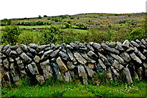 M2300 : The Burren - R480 - Stone Wall & Grazing Area near Poulnabrone Dolmen Parking Area by Joseph Mischyshyn