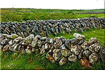 M2300 : The Burren - R480 - Curve in Stone Wall near Poulnabrone Dolmen Parking Area by Joseph Mischyshyn
