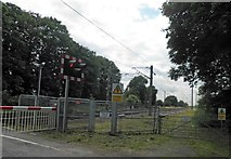 SK7964 : Railway crossing on the East Coast Main Line Carlton on Trent by Steve  Fareham