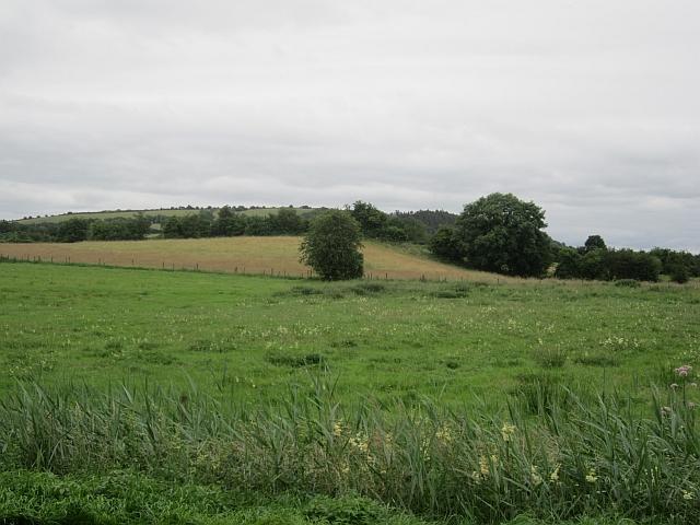 Pasture, Clonnageeragh