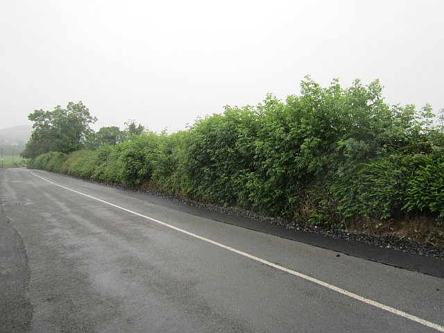 Local road, Ryefield