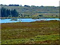 NX2953 : Gargrie Moor by Andy Farrington
