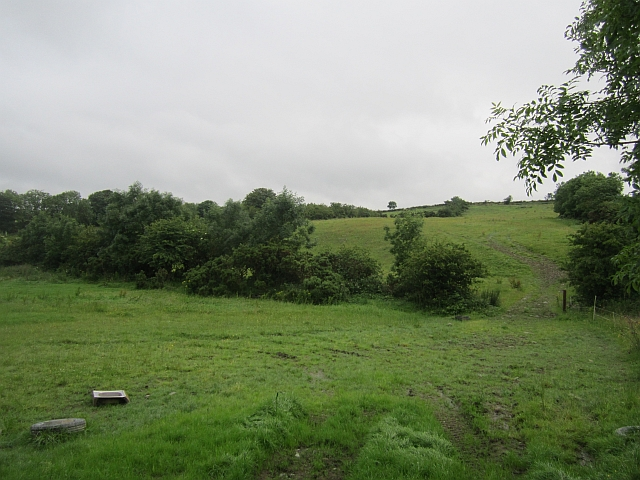 Hilly grassland near Tullyaran