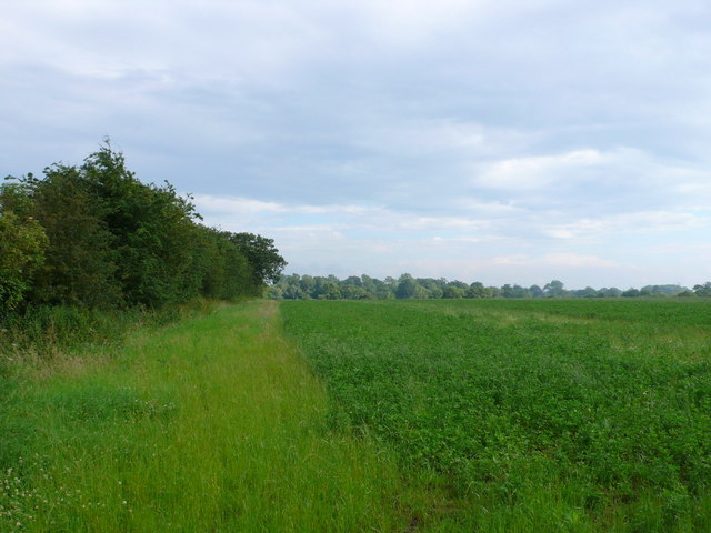 Fields near Longfurlong