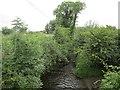 N8098 : River Lagan by Richard Webb