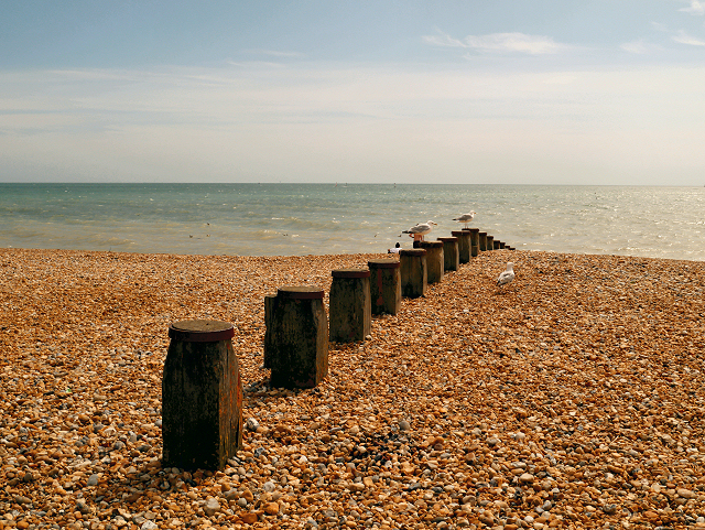 Groyne, Eastbourne Beach