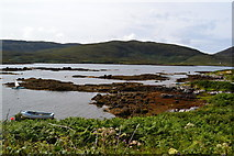 NF7828 : On the shore of Loch Aineort by David Martin