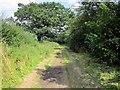SJ5159 : The Bishop Bennet Way near Newton by Jeff Buck