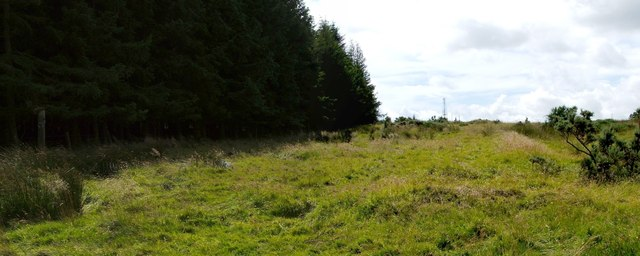 Remains of Wardhouse field system