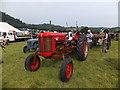 SH8070 : A Massey - Harris tractor by Richard Hoare