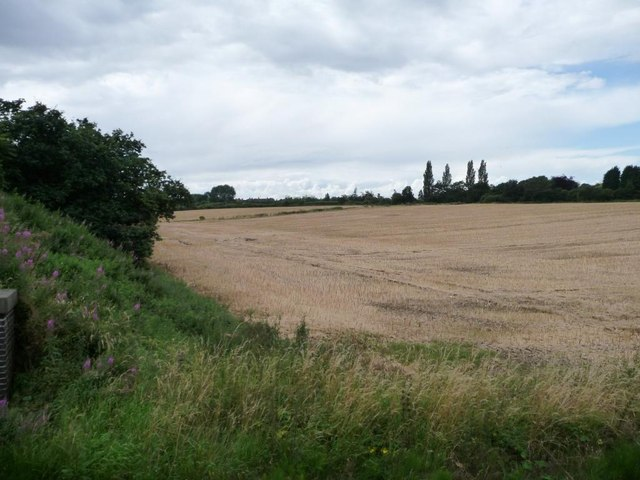Corner of a stubble field, east of Shelthorpe