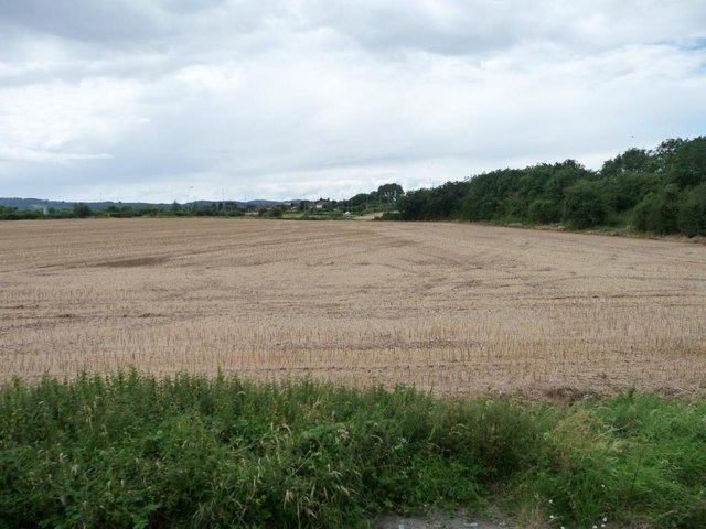 Corner of a stubble field, west of Quorn Lodge