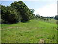 ST7169 : Looking up Lansdown Lane from the field gate by James Ayres