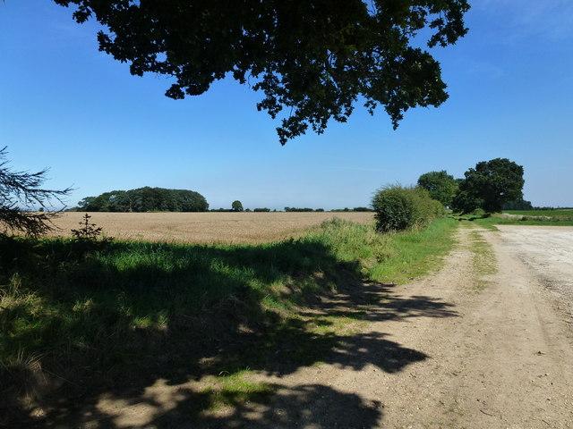 Holgate Road near Little Barwick