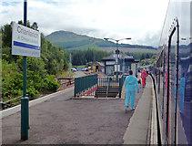 NN3825 : Crianlarich station by Dr Neil Clifton