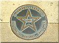 Photo of David Mellor bronze plaque