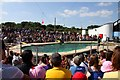 TL0017 : The Sea Lion Arena in Whipsnade Zoo by Steve Daniels