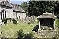 SU2698 : Ivy in the tomb by Bill Nicholls