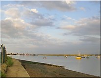 TQ7771 : The Medway estuary, looking downstream from the Wilsonian Sailing Club by Stefan Czapski