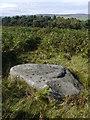 SE1146 : Barmishaw Stone, Ilkley Moor by LDBrown