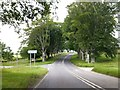 ST9602 : Beech trees lining Blandford Road by David Smith